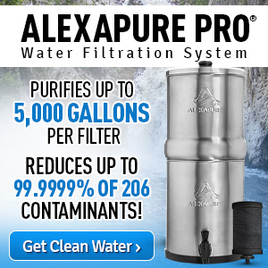 Best Shower Head Filters 2020 Buyers Guide The Safe Healthy Home